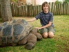 Devin with Galapagos tortoise